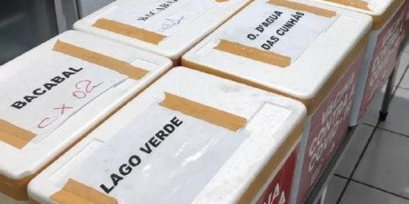 Bacabal recebe o primeiro lote de vacinas contra a Covid-19
